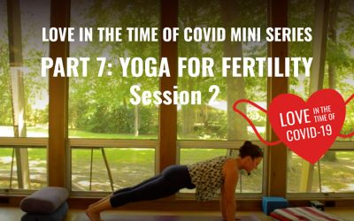 Part 7: Love in the time of COVID Mini Series — Yoga for Infertility Session 2